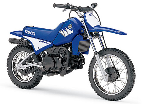Download Yamaha Pw80 repair manual